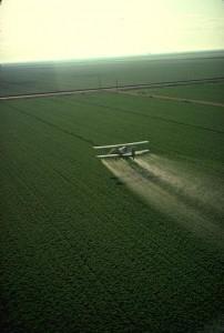 Costa Rica est le numéro un mondial dans l'utilisation des agrochimiques