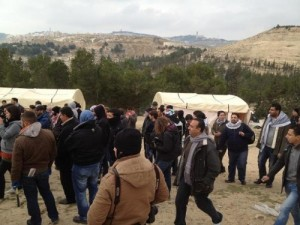 Palestinian, International Activists Storm E1 Zone, New Palestinian Village to be Built