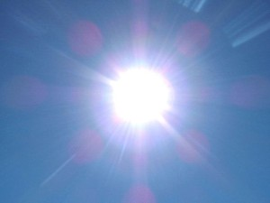 Renewable agency applauds U.A.E. solar launch