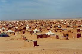 I Saharawi,  un popolo dimenticato nel deserto