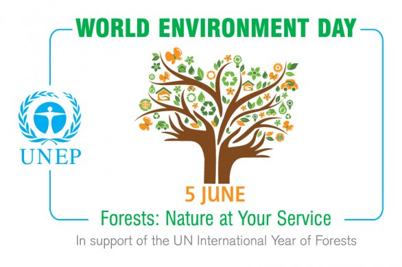 World environment day essay in english