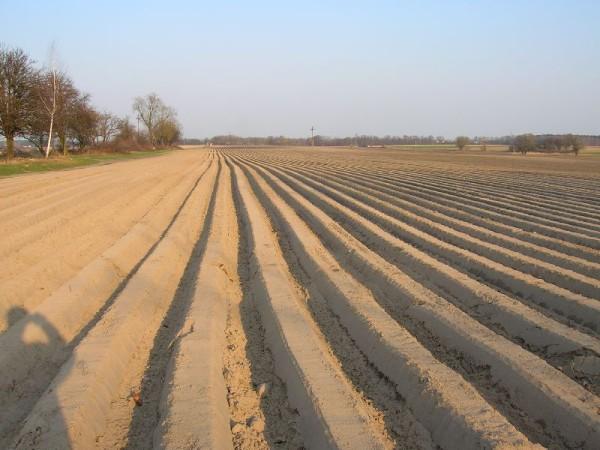 Un'agricoltura senza contadini
