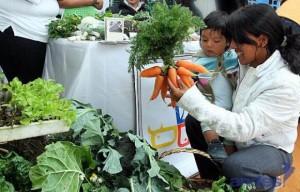 L'Equateur vise à éradiquer la malnutrition chronique infantile d'ici 2017