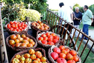 Comida ecológica en tiempos de crisis