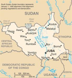 ONU reforça presença de tropas no Sudão do Sul