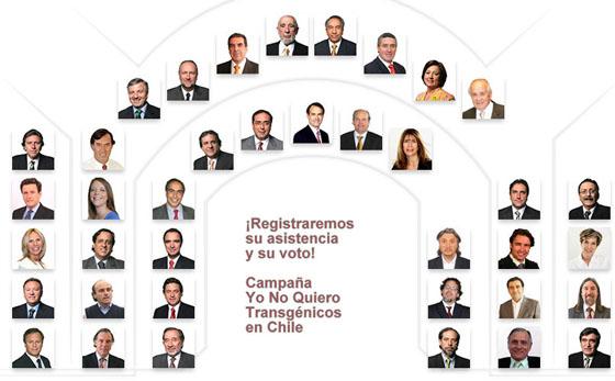 chile senadores: