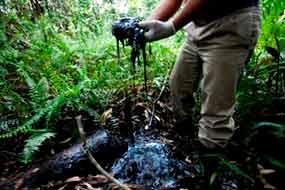 Intelectuales del mundo expresan apoyo a Ecuador frente a Chevron