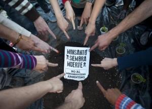 En un mes, Monsanto sufre reveses en Francia, Sudáfrica y Campeche