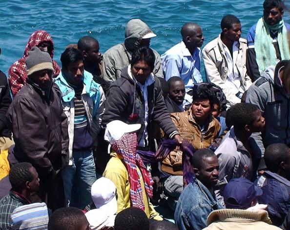 Imigração: uma rede para o desenvolvimento