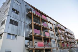 Le Village Vertical, une alternative écologique et solidaire face à la crise du logement