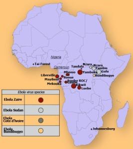 Le virus Ebola menace de se propager sur le Cameroun