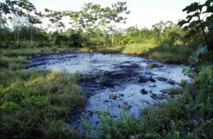 [Contexte] L'Equateur et les « mains sales » de Chevron