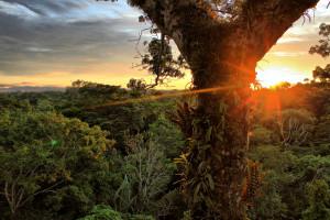 Il disastro Chevron-Texaco in Amazzonia non deve ripetersi