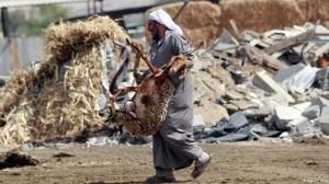 Israel will Beduinen umsiedeln