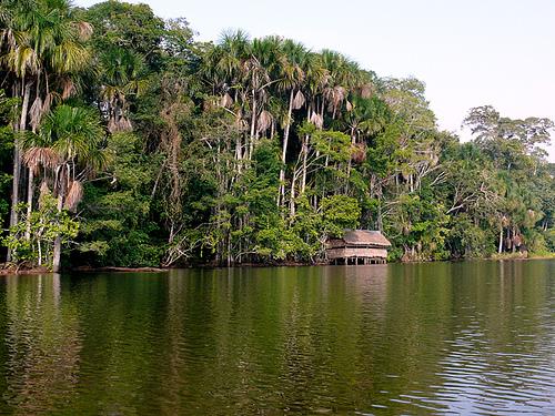 Comunidades indígenas firman convenio para conservación de bosques en Perú