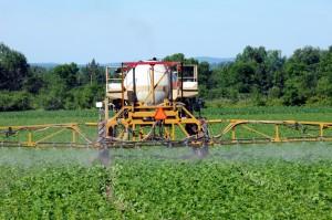 """Monsanto's """"Roundup"""" herding US kids over the edge"""