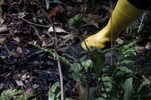 Presidente Correa llama a votar contra Chevron por irresponsable con el medio ambiente