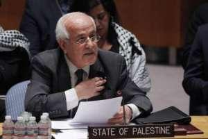 El resultado del voto sobre Palestina en el Consejo de Seguridad: balance y perspectivas