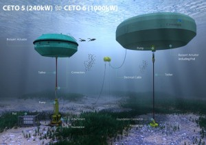 Grid-connected wave power supplying Australia
