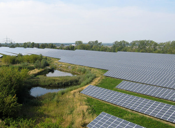 Germany's commitment to renewables helped drive down costs