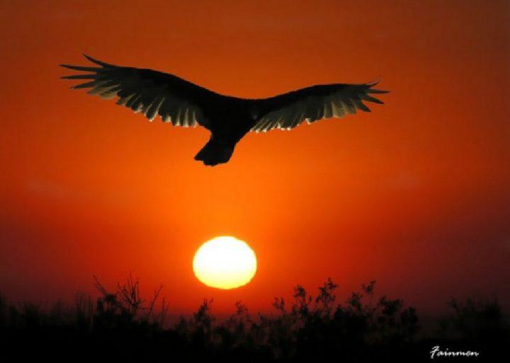 Poco a poco comenzará a clarear el alba de un nuevo día