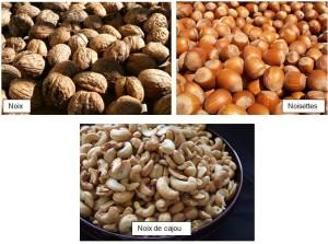 La consommation de fruits à coque prévient les maladies cardiaques