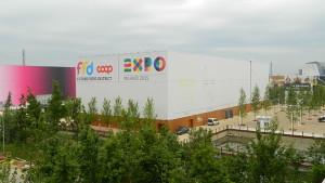 Vietare di poter lavorare in Expo è illegale