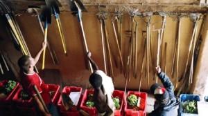 Les Jardins de Cocagne cultivent les hommes libres