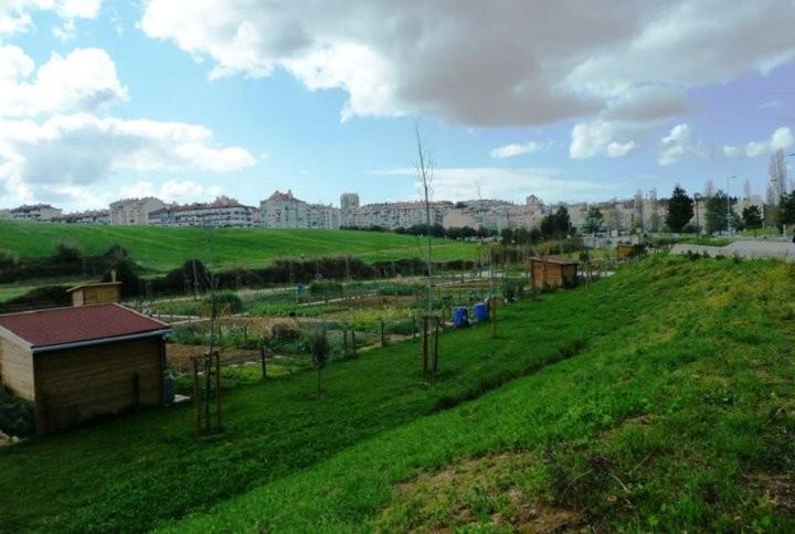 A Lisbonne, les parcs deviennent des potagers urbains