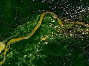 Greenpeace denuncia gli incendi in Amazzonia