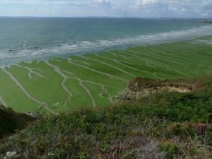 La malédiction des phosphates : dans les coulisses polluées et désertifiées de l'agriculture chimique