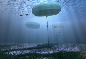 En Australie, une centrale à vagues produit de l'énergie pour la première fois dans le monde
