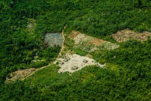 Greenpeace si allea con gli indigeni Ka'apor per difendere la foresta amazzonica con la tecnologia