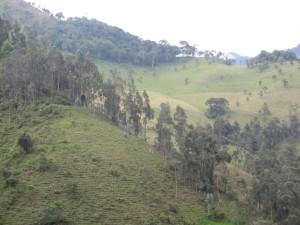 Fuera Anglo Gold Ashanti de Cajamarca