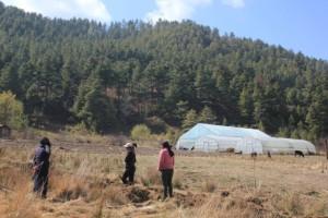 Le Bhoutan veut devenir le premier pays 100 % bio