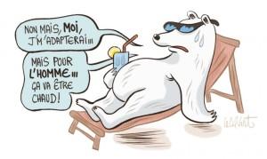 L'ours polaire fait-il trop d'ombre à la banquise ?