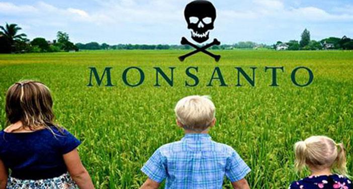 Califórnia classifica herbicida Roundup como cancerígeno