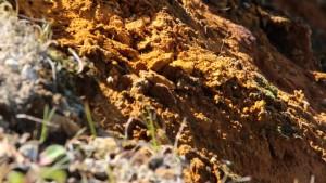 En Ariège, un projet minier suscite l'opposition de la population