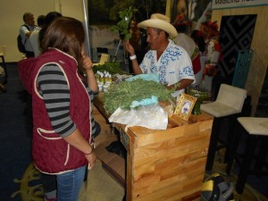Desprotegidas y populares, plantas medicinales subsisten en México