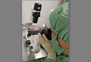 Κούβα : Βραβείο καινοτομίας για ένα εμβόλιο κατά του καρκίνου του πνεύμονα