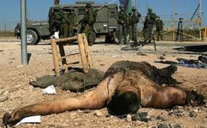 Cadáveres despedazados. ¿A quién culpamos?