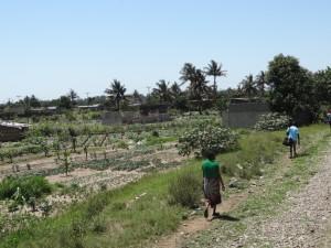 Deverá Moçambique celebrar o novo acordo climático de Paris?
