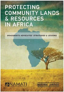 Protecting Community Lands & Resources in Africa
