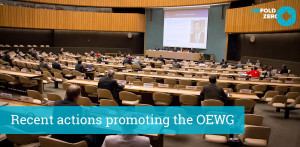 Open Ended Working Group on nuclear disarmament