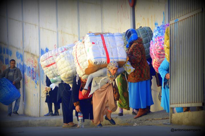 16 porteadoras marroquies