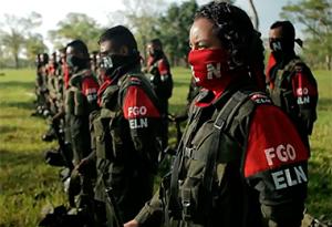 Inicia fase pública del proceso de paz entre el gobierno y el ELN