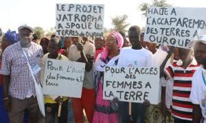 Fin de la «Caravane ouest-africaine pour la terre, l'eau, les semences»