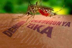 Bolivia destina recursos para combatir zika, dengue y chikungunya