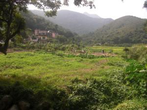 Hong Kong's green Lantau island  threatened by Gov't Grey Cement