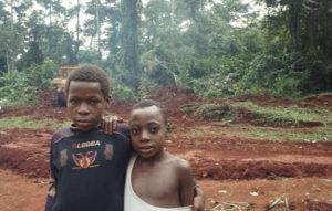 Il WWF partner di una compagnia del legname che distrugge la terra dei 'Pigmei'